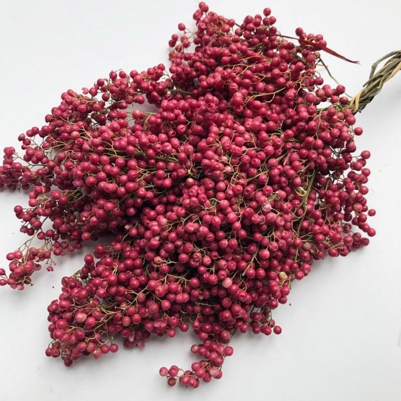 Σπόροι Περουβιανό πιπερόδενδρο (Schinus molle) 1.85 - 1