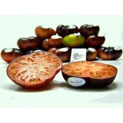 Mar Azul σπόροι ντομάτας 1.75 - 7