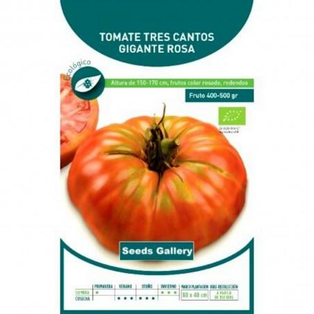 Tres Cantos Beefsteak Tomato Seeds 1.95 - 1