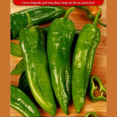 Italian Giant long Sweet Pepper Seeds 1.75 - 2