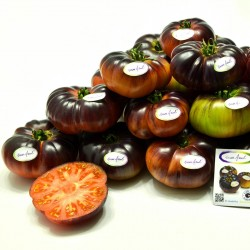 Mar Azul tomato seeds