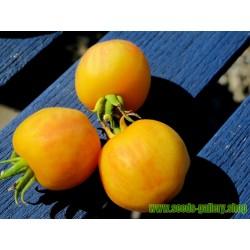 Semillas de Melocotón Tomate