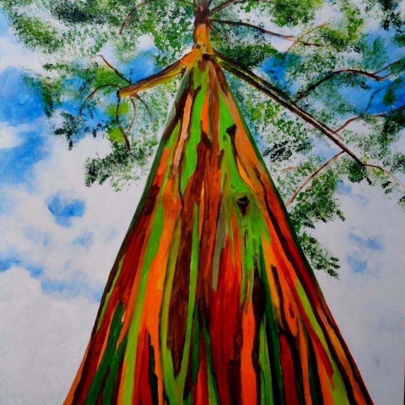 Rainbow - regnbåge Eucalyptus Frön 3.5 - 1