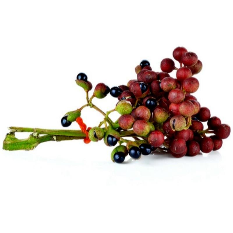 Sichuan Pepper, Szechuan Pepper Seeds (Zanthoxylum simulans) 2.75 - 1