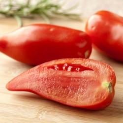 Sementes De Tomate ANDINE CORNUE 1.95 - 1