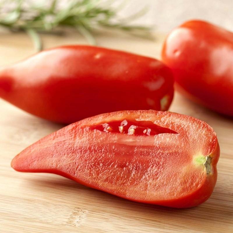 Graines de Tomate ANDINE CORNUE 1.95 - 1