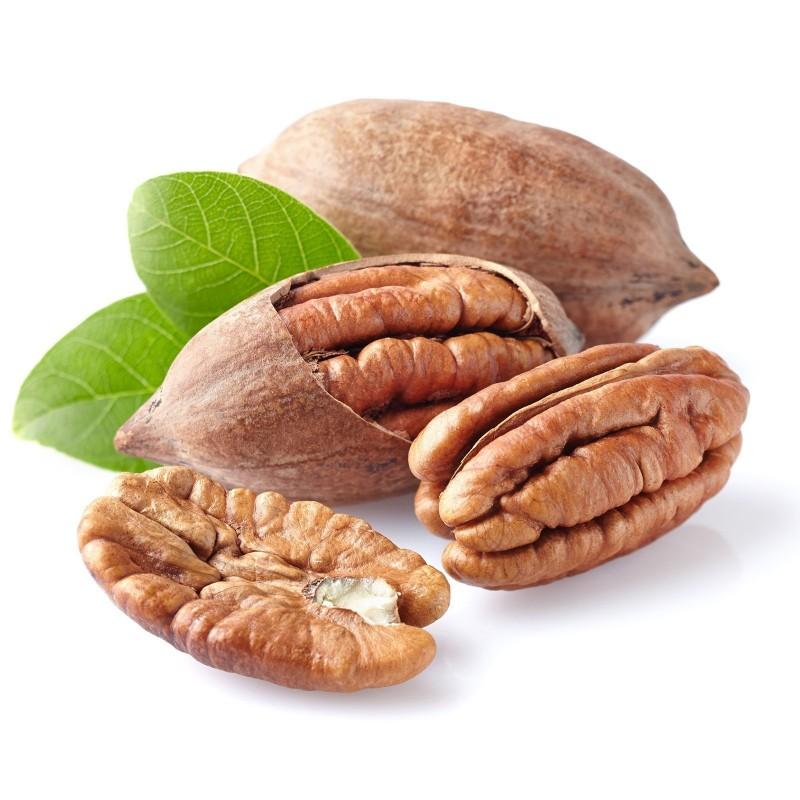 Pecan Seeds (Carya illinoinensis) 4.95 - 1