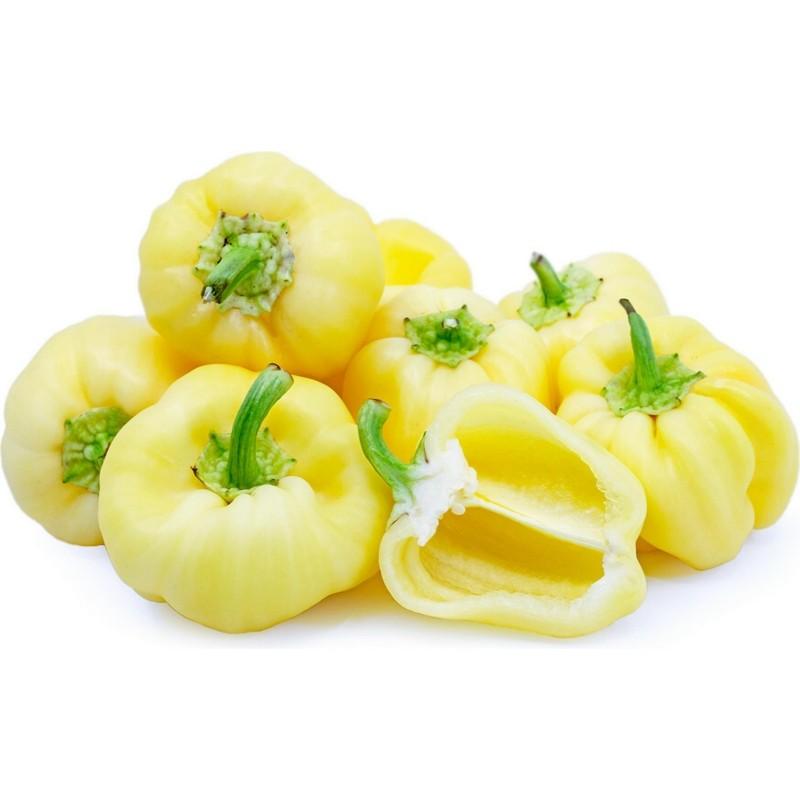 Semi di peperone dolce DIAMOND (bianco) 1.55 - 1