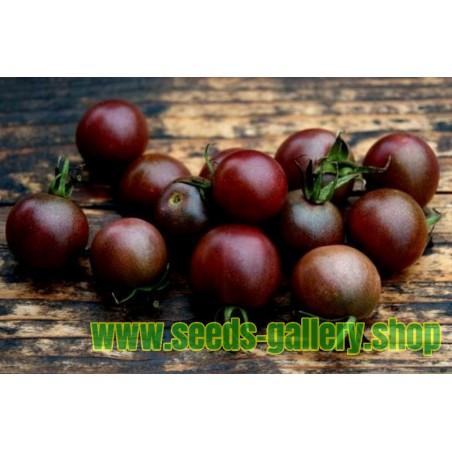 Semillas Tomate Cereza Negro Black cherry