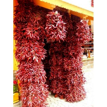 """The Hungarian chilli Seeds """"Ceruza erős paprika"""" 1.85 - 3"""