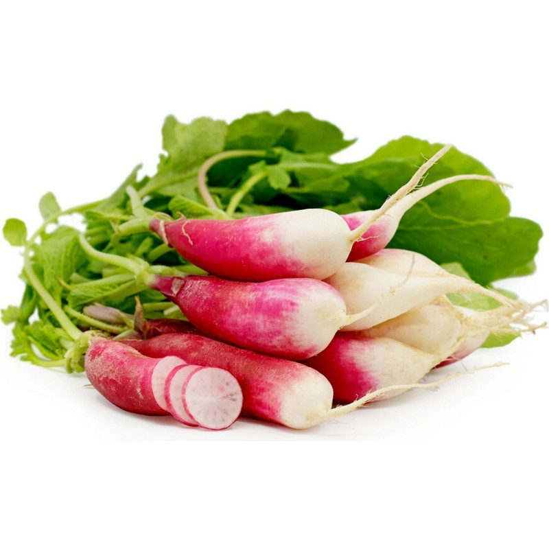 Cylindrical Radish Seeds Flamboyant 3 1.55 - 1