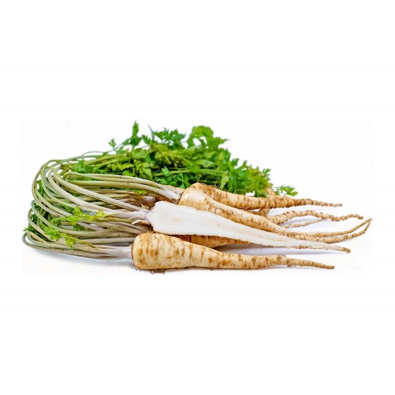 Petersilie Samen - Mittellang Wurzelpetersilie 2.55 - 1
