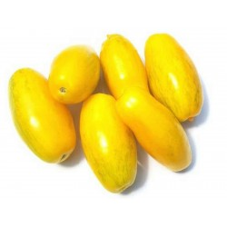 Sementes de Tomate Banana Legs 1.85 - 5