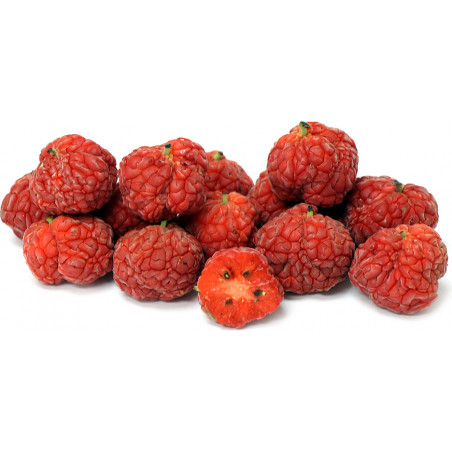 Chinese mulberry - Che Fruit Seeds (Cudrania tricuspidata) 2.95 - 5
