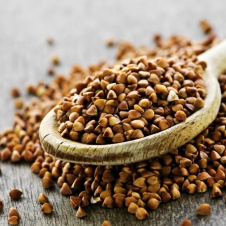 Buckwheat Seeds (Fagopyrum esculentum) 1.85 - 2
