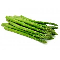 Graines d'asperge - Asparagus officinalis 1.65 - 2