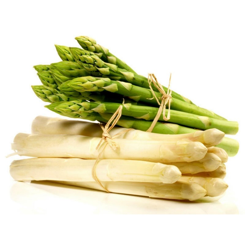 Graines d'asperge - Asparagus officinalis 1.65 - 1