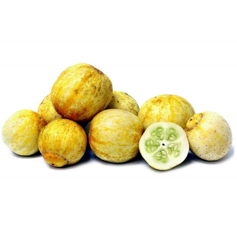 Citrongurka Frö (Lemon Cucumber) 1.95 - 1