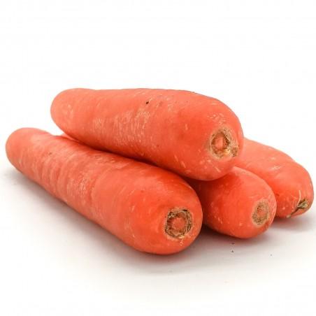 Semillas de zanahoria Flakkee 2.049999 - 2
