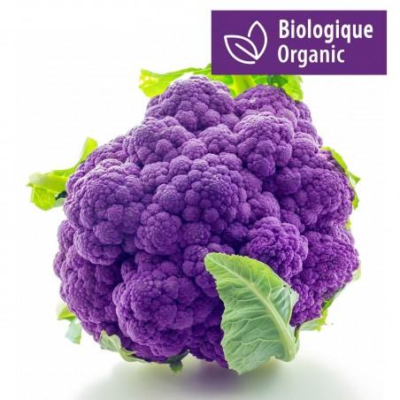 Purple Cauliflower Seeds