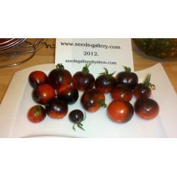 """Semi di pomodoro """"Indigo Rose"""" Rare 2.5 - 4"""