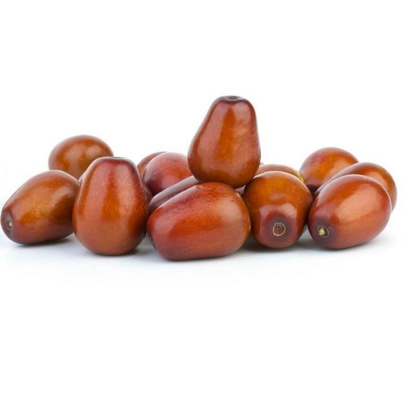 Σπόροι Ζίζιφος 3.5 - 1