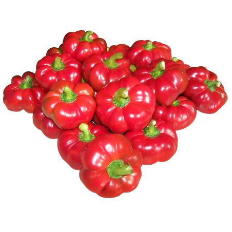 GREYGO Hungarian sweet pepper seeds 1.55 - 3