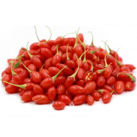 Goji Beere Samen (Lycium chinense)