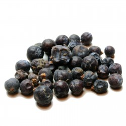 Juniper Berry Seeds (Juniperus communis) 1.65 - 4