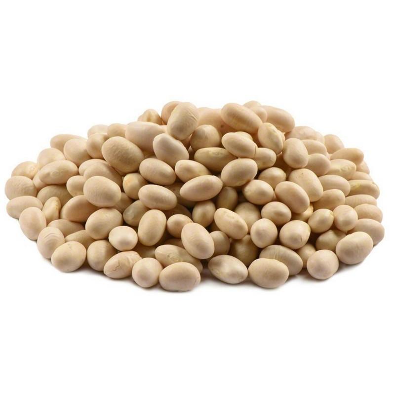 Kleine weiße Navy Bohnen Samen Perlbohnen 1.95 - 1