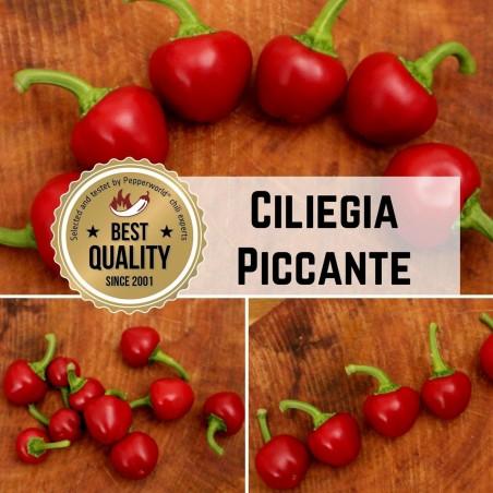 Ciliegia Piccante, Satan's kiss Chili Samen – italienische Sorte 2.25 - 2