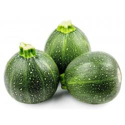 Zucchini Seeds Tonda Chiara di Toscana 2.15 - 1