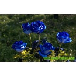 Graine De Rose Bleue (Magique)