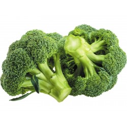 Broccoli Ramoso Calabrese Seeds 1.95 - 1
