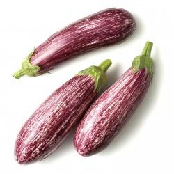 Graines d'aubergines...