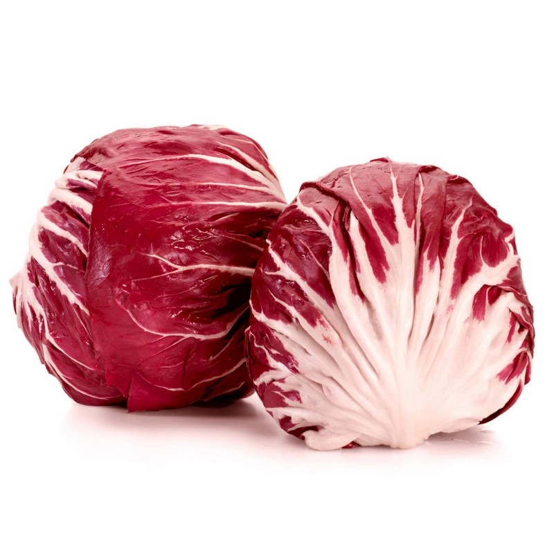 Radicchio - Chicory Seeds ''Red Verona''  - 2
