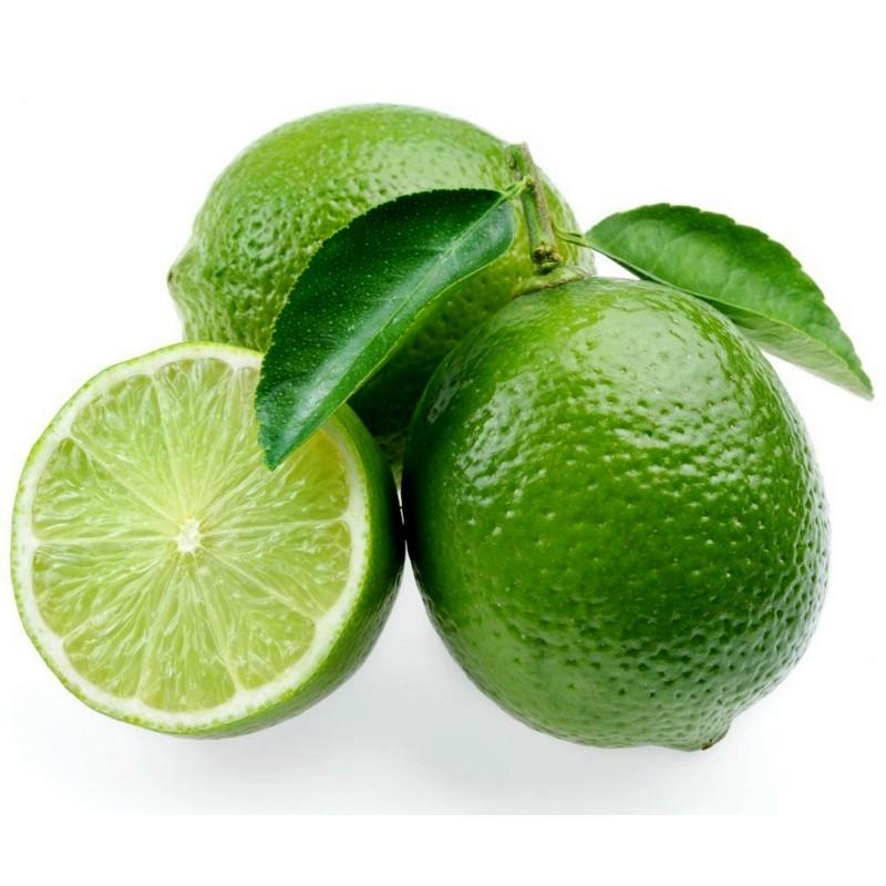 Sementes de limão-taiti ou limão-tahiti  - 3