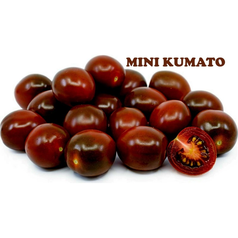 Semillas de tomate cherry negro Kumato  - 2