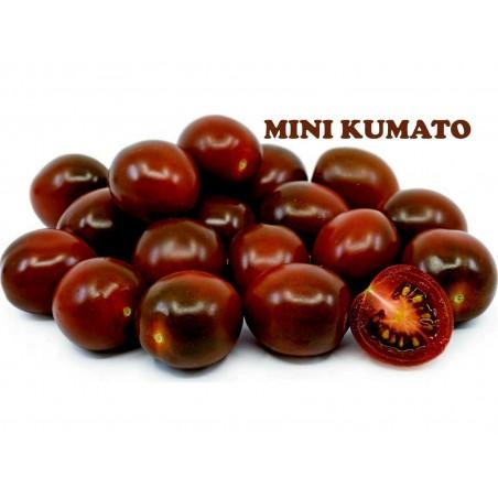 Cherry Kumato Black Tomato Seeds