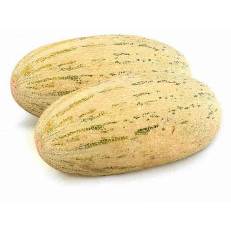 MIRZACHUL, GULABI, TORPEDO Melon Seeds