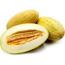 Mirzachul, Gulabi, Torpedo Melon Seeds Seeds Gallery - 5
