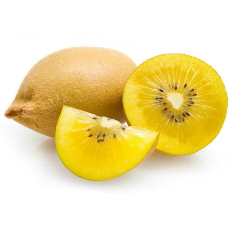 Golden Kiwi Seeds Hardy - 25°C  - 4
