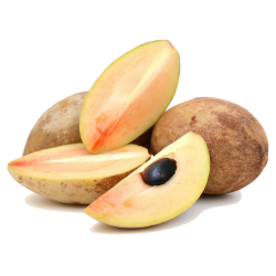 Sapote - Kaugummibaum Samen  - 4