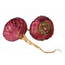 Semillas de Maca Rojo (Lepidium meyenii)  - 3