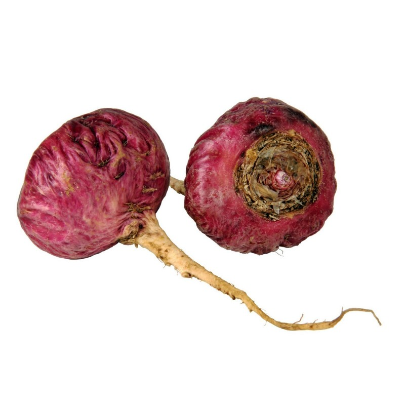 Red Maca Seeds (Lepidium meyenii)  - 3