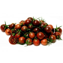 Semillas de tomate Cereza Negro - Black cherry Seeds Gallery - 4