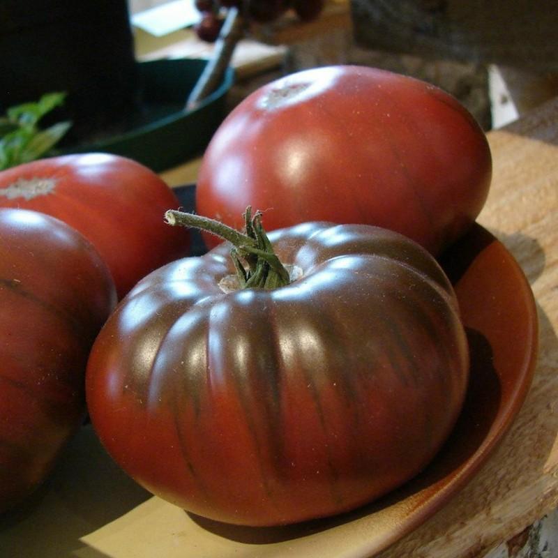 Seme ruskog paradajza ARBUZNYI (Lubenica) Seeds Gallery - 5
