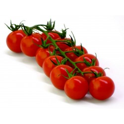 Sementes de tomate orgânico...