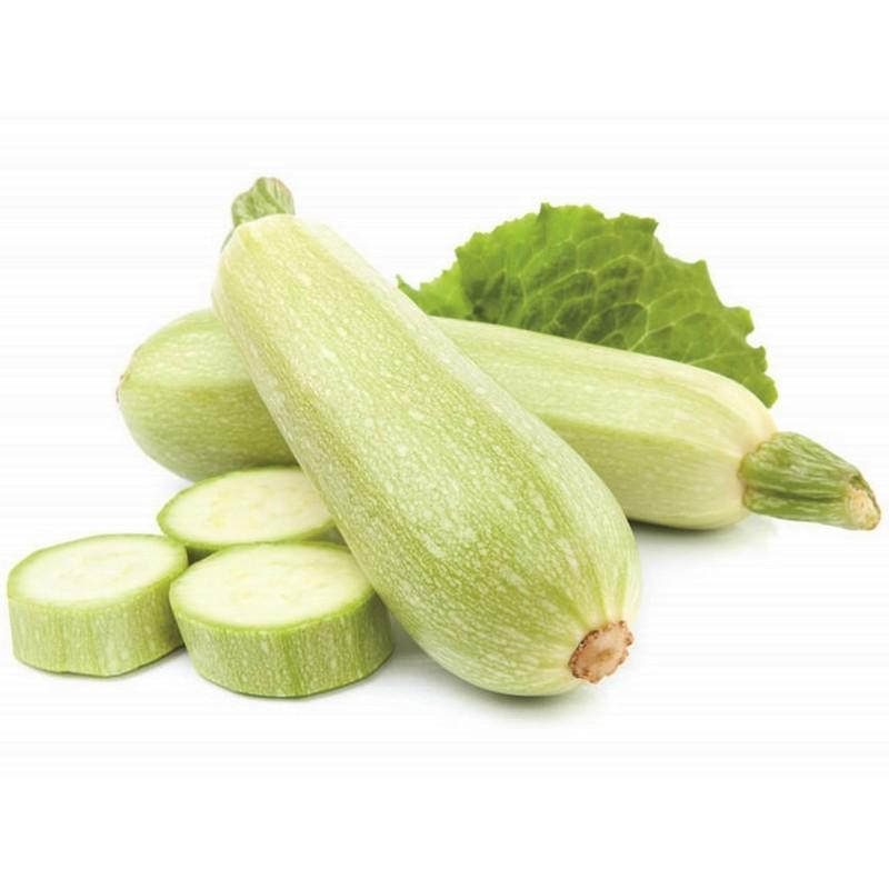 Semillas de Calabacín Blanco Sicilia Seeds Gallery - 1