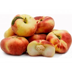 Saturn Peach, Paraguayo, Platerina Peach Seeds  - 4